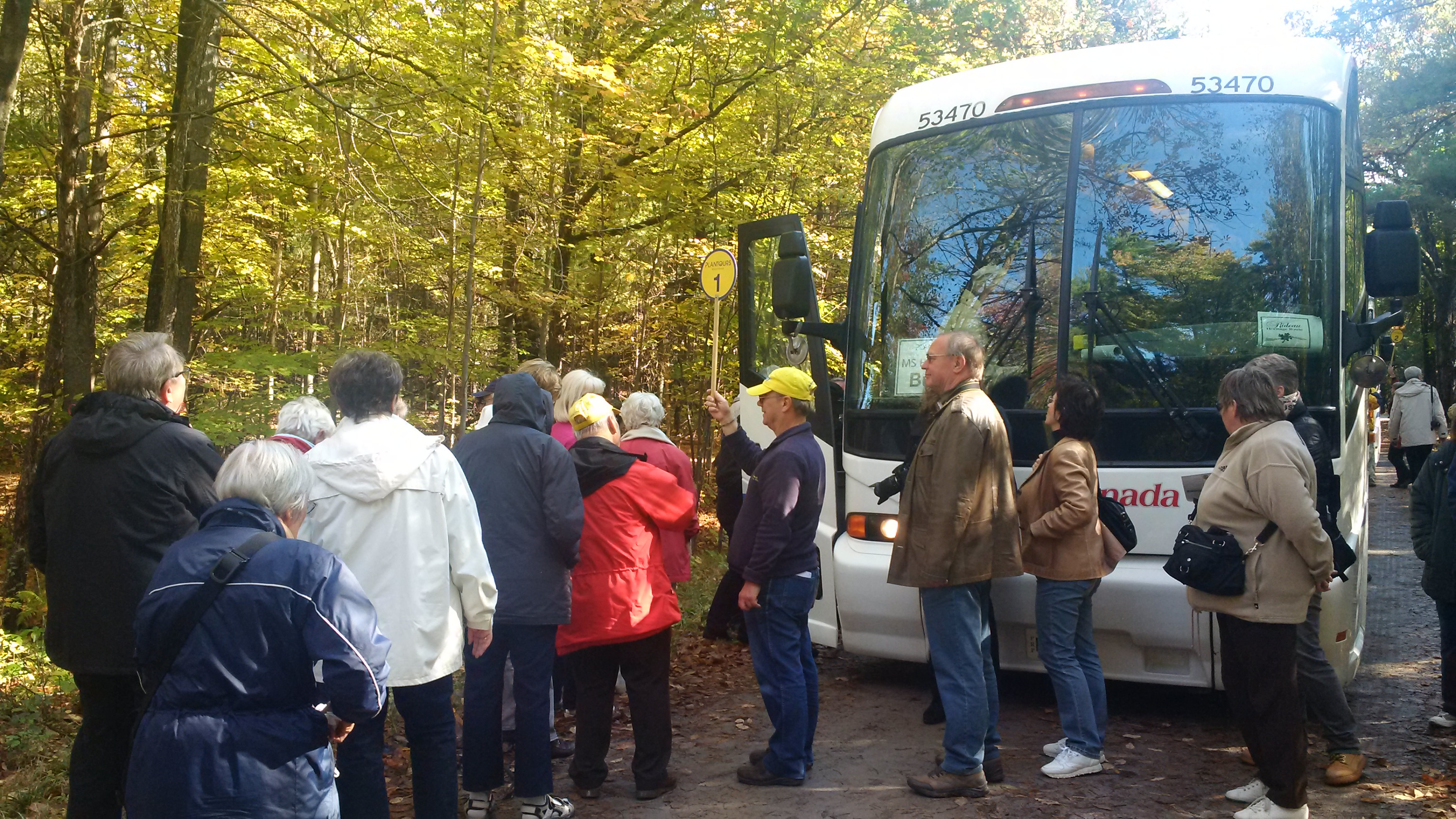 Image of people infront of a bus in the forest.