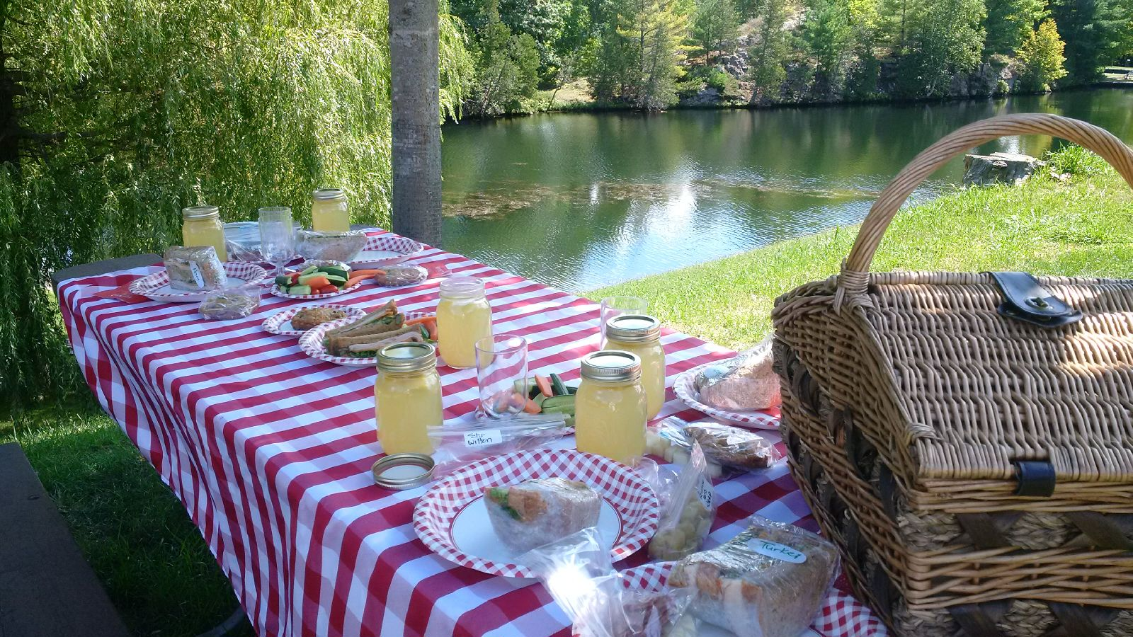 Image of a picnic set up.