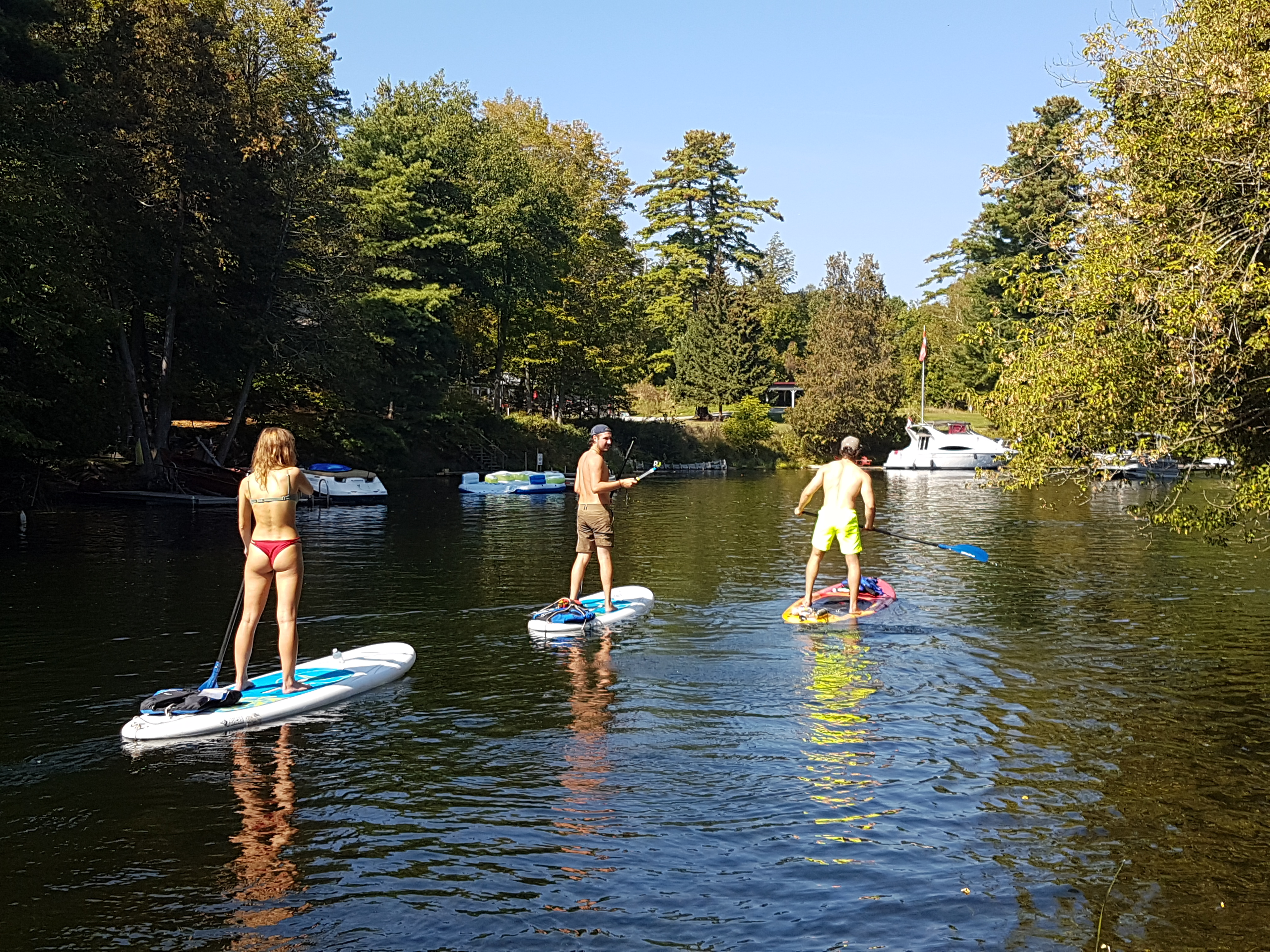 Image of three people on paddleboards.