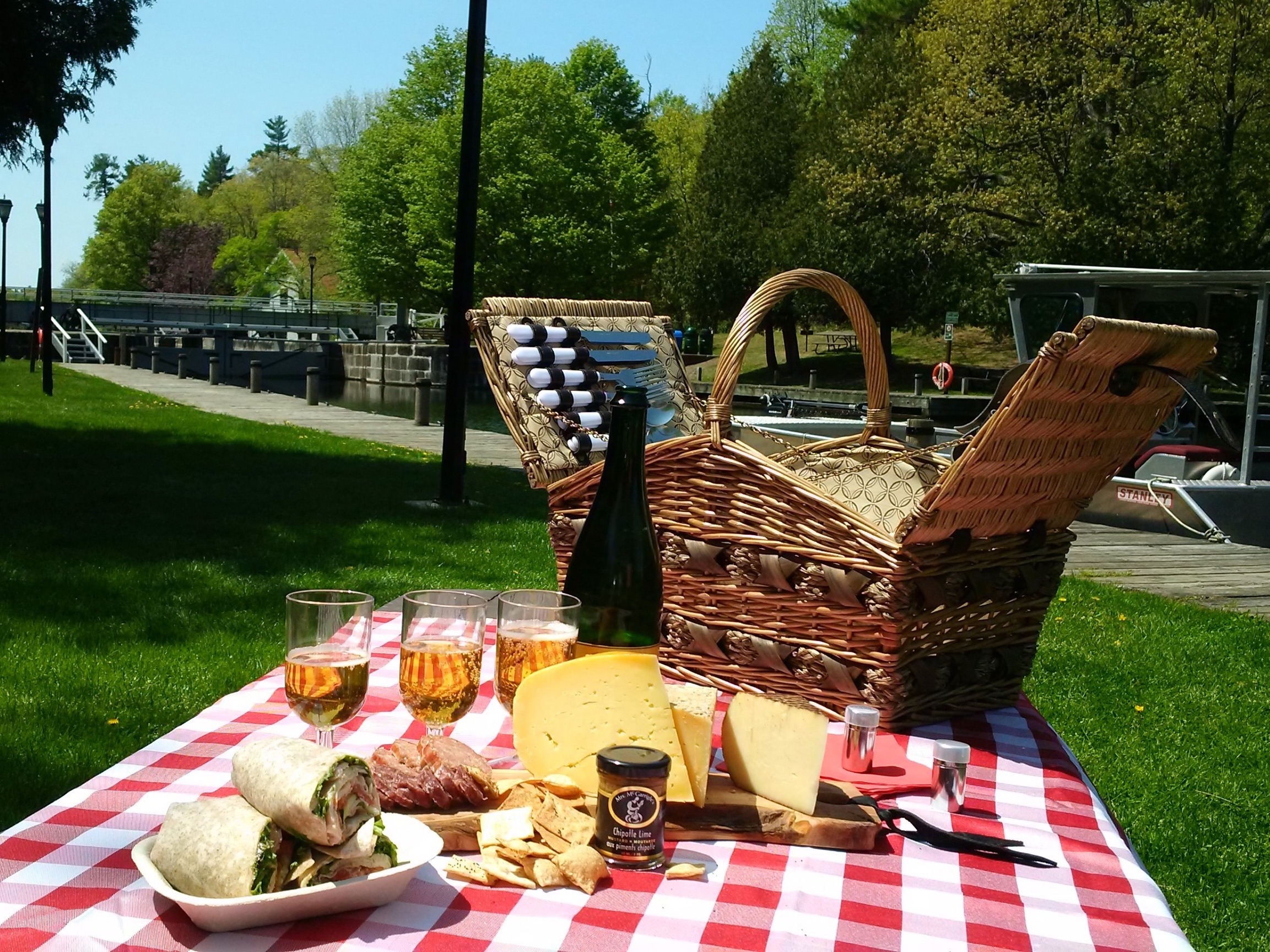 Image of a picnic basket on a picnic blanket with an array of food.